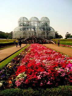 Botanical Garden - Curitiba, Parana. One of the worlds most sustainable cities.