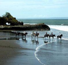Island Horse - Yeh Gangga Beach Bali.  Kunti Plaza, Jl Kunti, Seminyak, Bali 62361, Indonesia