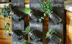 diy indoor garden ideas Archives - Home Deco