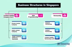 The ease of doing business, compliance responsibilities, scalability, tax rates, liabilities, ease in transfer of share, investors' queries & expectations affects the choice of the business structure for a #company #incorporation #Singapore. It is a tough call to take as choosing the right business structure to suit the present and future need of the company is a challenging task for even the experienced business owners. It can impact a business' viability, growth, and future expansion.