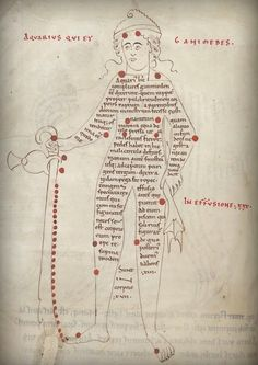 The constellation of Ganymedes, fragment of an early 12th century English scientific textbook, British Library