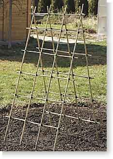 62 Super Ideas for Building Diy Garden Trellis Ideas - Diy Garden Projects Tomato Trellis, Bamboo Trellis, Diy Trellis, Garden Trellis, Garden Gates, Trellis Ideas, Wisteria Trellis, Clematis Trellis, Cucumber Trellis