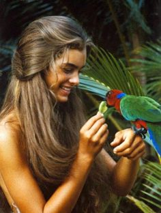 Blue Lagoon Beauty: Brooke Shields sporting a most enviable tan.