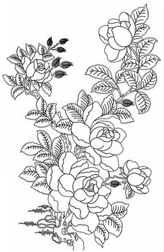 Elegant Flower Coloring Pages For Adults
