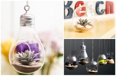 Fun Decor Ideas! Glassy and Classy - Glass Containers - Just $7.99! - http://www.pinchingyourpennies.com/fun-decor-ideas-glassy-and-classy-glass-containers-just-7-99/ #Glasscontainers, #Pickyourplum, #Pinchingyourpennies