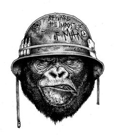 Gorilla - Paul Jackson