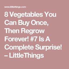 8 Vegetables You Can Buy Once, Then Regrow Forever! #7 Is A Complete Surprise! – LittleThings