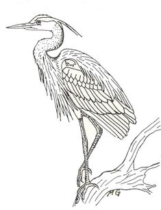 adult coloring page heron - Google Search