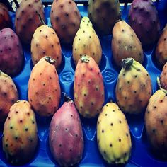 Apart from the unusual name, appearance, and origins of this fruit, it also has a very unique composition of nutrients, including high levels of vitamin C, B-family vitamins, magnesium, potassium, calcium, copper, and dietary fiber. The peak season for prickly pears is late summer through early winter, September to December! #CSL #countysupplies