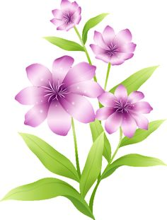 [Res] Light Purple Flowers PNG by on - mustrilised - Butterfly Flowers, Real Flowers, Flower Art, Beautiful Flowers, Flower Images, Flower Pictures, Light Pink Paint, Friendship Flowers, Light Purple Flowers
