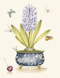 Botanical Drawings, Botanical Illustration, Botanical Prints, Watercolor Illustration, Painting & Drawing, Watercolor Paintings, Cute Canvas Paintings, Pottery Painting, Limited Edition Prints