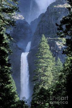 ✯ Yosemite Falls in Spring