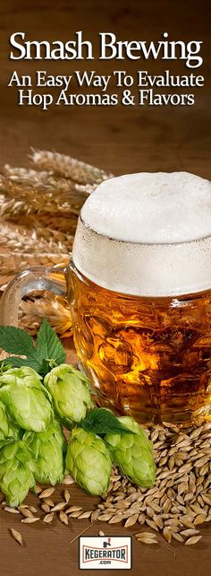 You Evaluate a New Hop? SMaSH It! Smash Brewing - How to Evaluate a Hop Aromas & FlavorsSmash Brewing - How to Evaluate a Hop Aromas & Flavors Brewing Recipes, Homebrew Recipes, Beer Recipes, Coffee Recipes, Bar A Burger, Beer Maker, Home Brewing Beer, German Beer, How To Make Beer