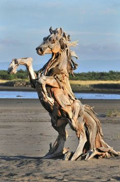 This is a great sculpture. To me, this was about wild horses. I think that drift wood is a good substance for such a piece of art. Other than its good sculpture material, I think it could be about horses being free and going where they want to go. Driftwood Sculpture, Horse Sculpture, Driftwood Art, Animal Sculptures, Driftwood Beach, Beach Wood, Ribbon Sculpture, Clay Sculptures, Garden Sculpture