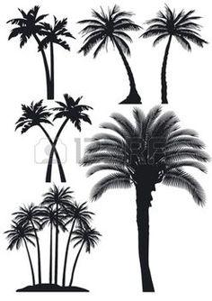 feuille de palmier: palmiers mis
