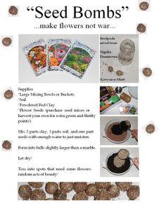"""""""Seed Bombs"""""""