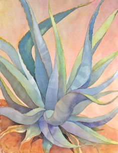 Agave by Janet Brome Cactus Drawing, Cactus Painting, Watercolor Cactus, Cactus Art, Watercolor Paintings, Succulents Painting, Watercolour, Art Floral, Gouache Painting