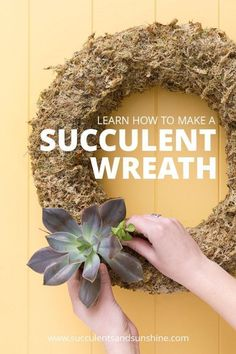 Making a succulent wreath is so much fun! Find out how in this post!