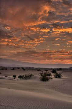 Dawn, Death Valley National Park, CA | Jeff Sullivan
