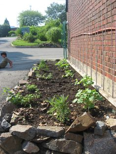 "Lauren is a parent at Marblehead Community Charter Public School in Marblehead, MA. ""Our 15-year old garden is already organic.  As the school serves fresh produce, strengthening its ability to produce its own food would be cost effective. We'll expand integration of the school garden across the grade level curricula - soil chemistry, biology, crop rotation. This gives the kids hands-on experience that they can apply in science, nutrition, and math courses (at the very least).""…"