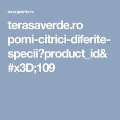 terasaverde.ro pomi-citrici-diferite-specii?product_id=109