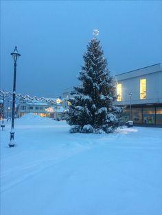 Christmas Tree, Landscape, Holiday Decor, Life, Outdoor, Home Decor, Paisajes, Xmas, Noel