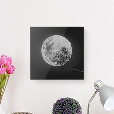 [ 보름달 ] by @11010design / snsda.com / #에센스다 에서 여러분들의 작품을 #아크릴액자로 만들어보세요! 에센스다는 여러분들의 창작활동을 응원합니다 :) . . 재편집, 무단복제는 삼가해주세요. Copyright ⓒ '11010design' All Rights Reserved. . . #snsda #design #artwork #illustration #drwaing #poster #artprint #painting #moon #fullmoon #f4f #에센스다 #디자인 #동화 #일러스트 #그림 #아트웍 #소통 #선팔 #맞팔 #달 #보름달 #봄 #예술 #작가 #아트프린트 #봄 #꽃