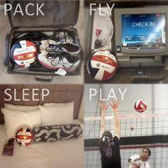 I love volleyball essay