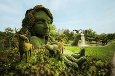 Ботанические сады мира  http://www.dostavka-tsvetov.com/news/botanicheskie_sady_mira/2014-04-01-361