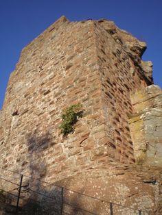 Wasgau News - Aktuelle News aus der Region: Burg Hohenburg bei Lembach (Elsass) - Château du H...