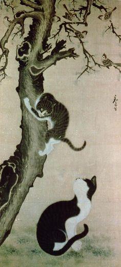 Cats, 17th century