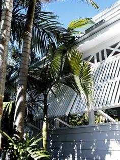 Little Palm, Byron Bay.