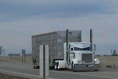 Western Kansas Ghost Rider!!!!!!!