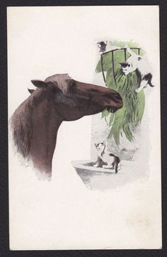 Horse-Cats-Kittens-Illustrated Art-Antique Postcard
