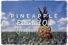 Pineapple Essential Oil – Pineapple Fragrance Oil.        Pale yellow with a citrus scent, Pineapple Oil is actually not technically an essential oil but is a Fragrance Oil that is used to bring a lovely, fruity scent to various perfumes and personal care products. Pineapple as a fruit has a great number of health benefits including being anti-inflammatory, lowering blood pressure, promoting circulation, and healing colds and flu.webessentialoils.com