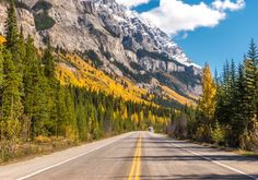 This drive from Jasper to Banff is one of the best out there. Explore wildlife, scenic mountain passes and many glaciers that crest up on the highway.