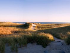 Take a tour of Martha's Vineyard and find out what this popular island destination has to offer, from the bustling streets of Vineyard Haven to the scenic cliffs of Aquinnah. From the experts at HGTV.com.