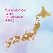 Sakura Bloom, Cherry Blossom, Japanese, Invitations, Spring, Design, Japanese Language, Save The Date Invitations, Design Comics