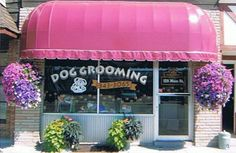 groomering appointment book | ... Cat Grooming Dog Grooming by Deb & Sue | Dogs | Cats | Full Service