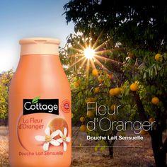 Douche Lait Sensuelle - La Fleur d'Oranger - Cottage