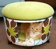 Resultado de imagem para DIY cat bed with old blanket