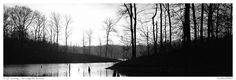 Winter landscape with bare trees and pond at sunrise. Tennessee, USA (Panoramic)