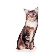 I/'m Happily Owned By A Maine Coon Cat Novelty Keyring Ideal Present//Gift