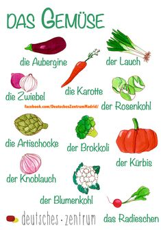- Deutsch / German / alemán / Wortschatz / Vocabulario / salud / DAF / verdura / Gemüse Source by kikadaby Study German, Learn German, Learn French, German Grammar, German Words, Teaching French, Teaching Spanish, Spanish Activities, German Resources