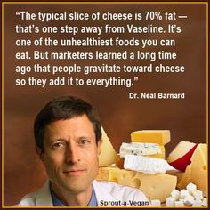 Truth about cheese