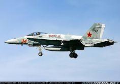 McDonnell Douglas F/A-18C Hornet aircraft picture