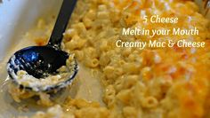 5 Cheese Melt in your Mouth Creamy Mac & Cheese | She's Got Flavor