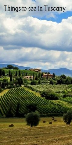 The beautiful green hills of Tuscany... You can plan a perfect trip to Italy's most beautiful region with our range of free guides.