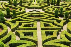 High angle view of parterre in the formal gardens of a baroque chateau. - Stock Photo - Dissolve