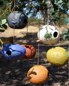 Bird House Kits Make Great Bird Houses Decorative Bird Houses, Bird House Kits, Ceramic Birds, Ceramic Bird Houses, Paperclay, Colorful Birds, Kit Homes, Clay Projects, Yard Art